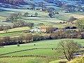 Part of Rosedale Valley East - geograph.org.uk - 896309.jpg