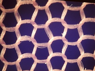 Nylon - Close-up photograph of the knitted nylon fabric used in stockings
