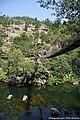 Passadiços do Rio Paiva - Portugal (32106494244).jpg