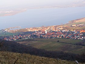 Pavlov (Břeclav District).jpg