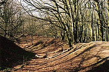 Ramparts inside Hembury hillfort