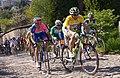 Peloton Tour de Romandie 2008.jpg