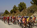 Peloton in the Volta a Portugal (1223616863).jpg