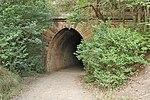 Picton Mushroom Tunnel