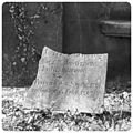 Piece of a tombstone plate (24270261263).jpg