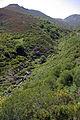 Piedrafita de la Mediana 02 by-dpc.jpg