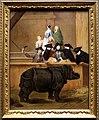 Pietro longhi, esibizione di un rinoceronte a venezia, 1751 ca.jpg