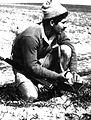 PikiWiki Israel 21018 The Palmach.jpg
