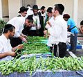 PikiWiki Israel 23375 Religion in Israel.JPG
