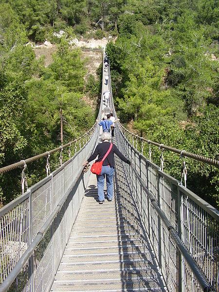 הגשר התלוי בנשר (נחל קטיע