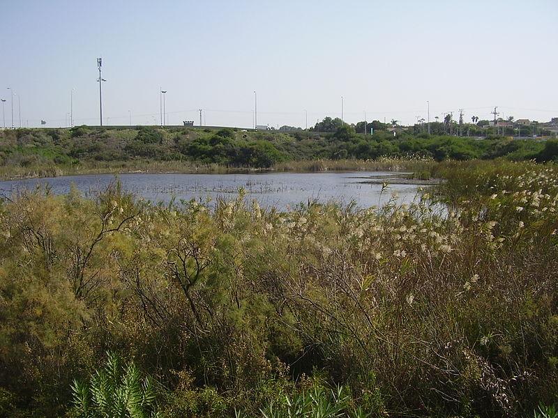 אגם בית ינאי
