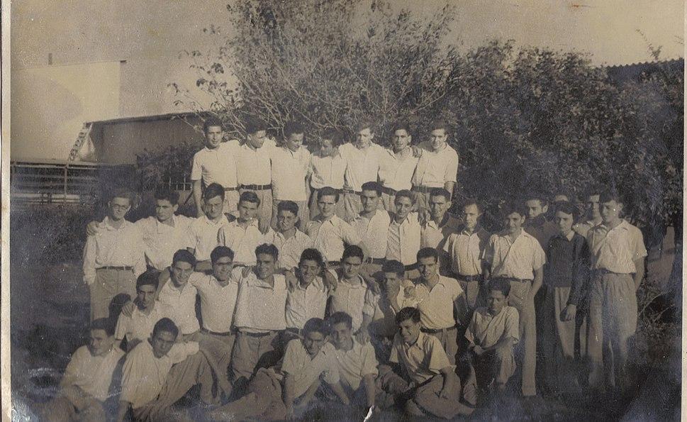 PikiWiki Israel 6426 Education in Israel