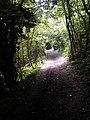 Pilgrim's Way, Trottiscliffe - geograph.org.uk - 491388.jpg