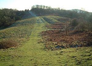 Midsummer Hill - Pillow Mound, Hollybush Hill