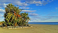 Playa de la Rada autumn - Estepona beach.jpg