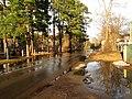 Pludi druvciema 2011 - panoramio (71).jpg