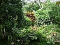 Poland. Warsaw. Powsin. Botanical Garden 152.jpg