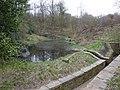 Pond in Cunnery Wood - geograph.org.uk - 1804075.jpg