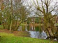 Pond on Westfield Common - geograph.org.uk - 1757994.jpg