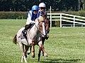 Pony race, hippodrome de Saint-Jean-des-Prés, Guillac.jpg