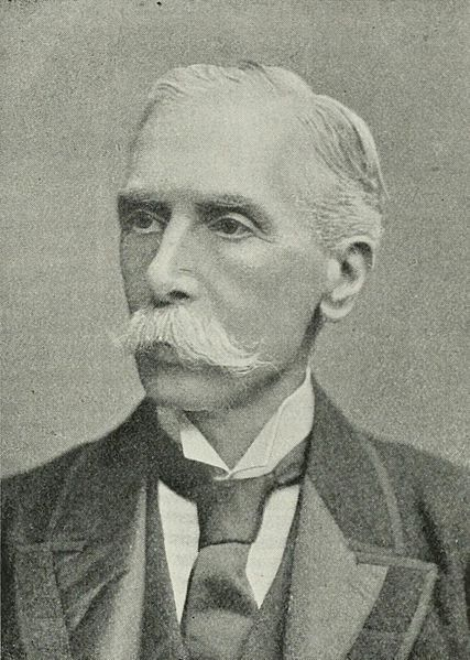 File:Portrait of Alfred Austin.jpg