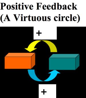 positive feedback virtuous circle