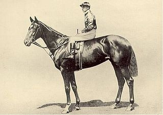 Pretty Polly (horse) Irish-bred Thoroughbred racehorse