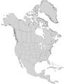 Prunus fremontii range map 0.png