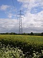 Pylon near Kingsclere - geograph.org.uk - 173531.jpg