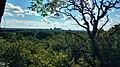 Quarry Hill Rochester view.jpg