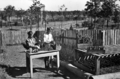 Queensland State Archives 2848 Students potting plants at Slacks Creek State School Experimental Pine Plot 1946.png