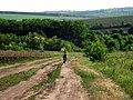 R23, Moldova - panoramio (11).jpg