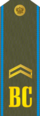 RFAF - Junior Sergeant - Every day green.png