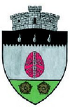 Coat of arms of Izvoarele Sucevei