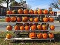 Rack of pumpkins, Keene NH.jpg