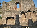 Raglan Castle, Monmouthshire 35.JPG