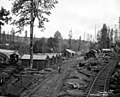 Railroad camp with Shay locomotive -360 in view, Elwood and Snow Logging Company, Nehalem, ca 1917 (KINSEY 2255).jpeg