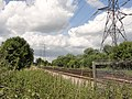 Railway Lines and Pylons at Staines Moor - panoramio.jpg