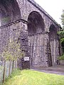 Railway viaduct, Bargoed - geograph.org.uk - 429714.jpg