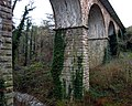 Railway viaduct, Crawfordsburn Glen (2) - geograph.org.uk - 664570.jpg