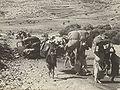Refugees in Galilee.jpg