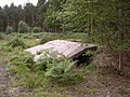 Remains of military stores in the Hawkhill Inclosure, New Forest - geograph.org.uk - 43456.jpg