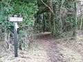Restricted byway near Knighton Farm - geograph.org.uk - 1162498.jpg