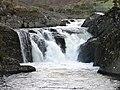Rheidol Falls - geograph.org.uk - 1052590.jpg