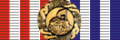 Ribbon of a Medal for Participation in Operation 'Storm'.png