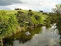 Ribeira do Almuro - Portugal (908045273).jpg