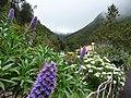 Ribeiro Frio – Natur pur 5-09 - panoramio.jpg