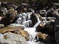 Rishikesh harikempty fallsdwar (391).JPG