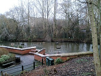 River Biss - The lake in Trowbridge Town Park