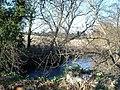 River Clwyd - geograph.org.uk - 113909.jpg